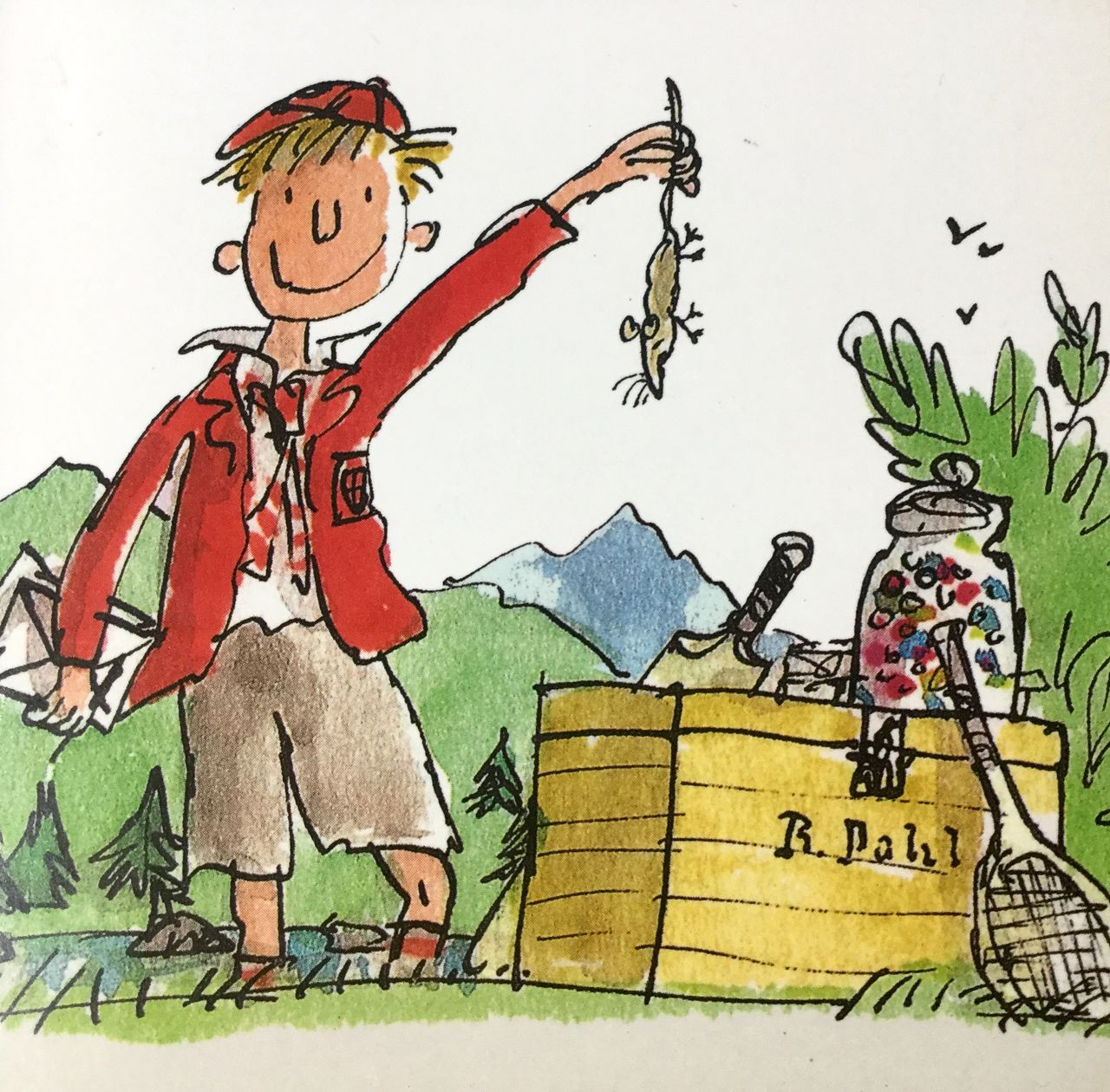boy roald dahl In 1961 dahl wrote about a boy called james and his adventures with a giant peach author - roald dahl roald dahl was born on the 13th of september 1916, in llandaff, cardiff, to norwegian parents.
