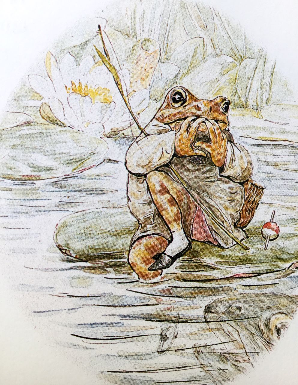 Beatrix Potter, Il mondo di Beatrix Potter, Sperling&Kupfer