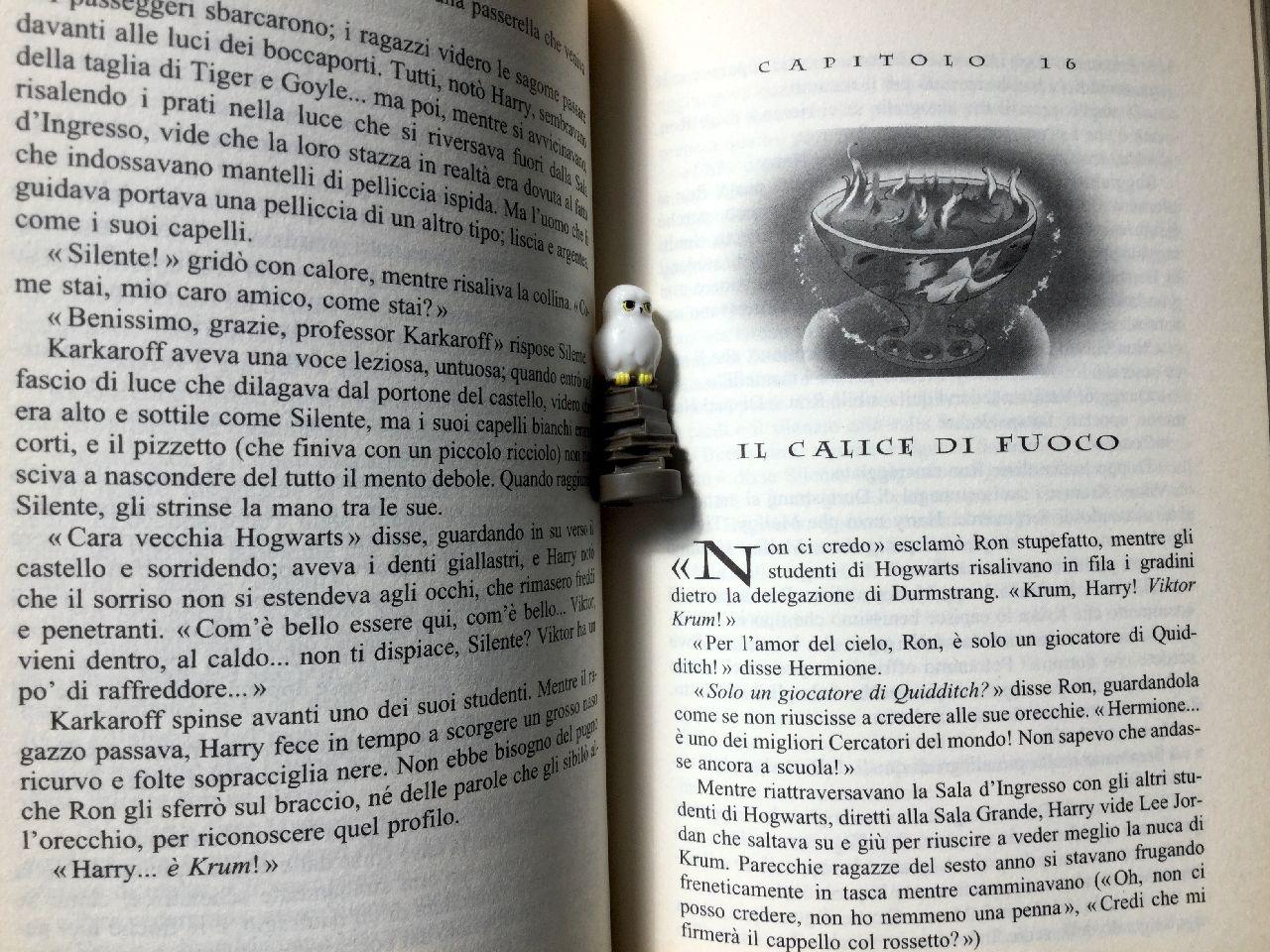 J. K. Rowling, Harry Potter, Salani