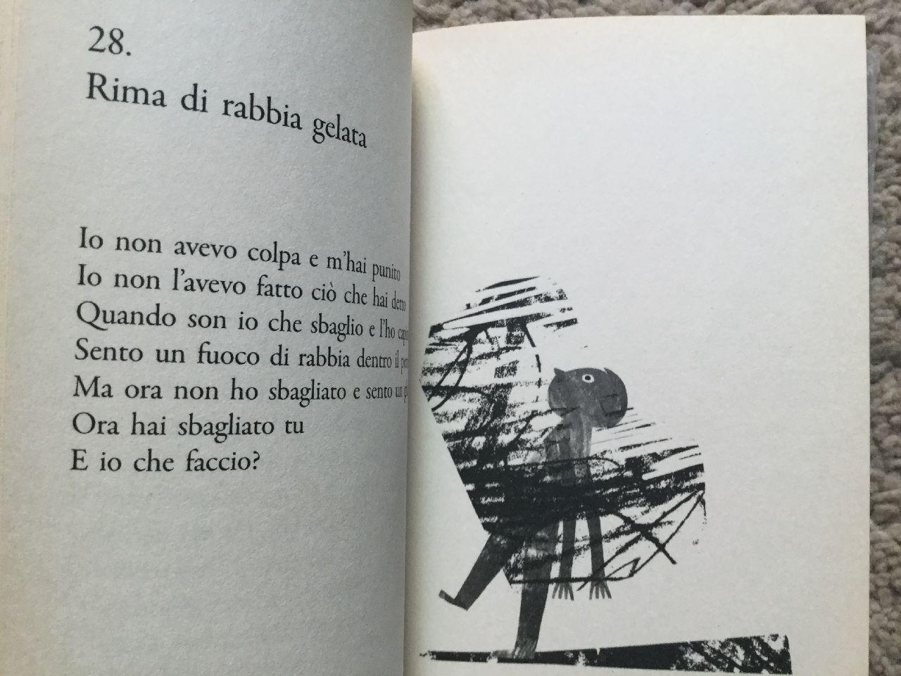 Bruno Tognolini - Giulia Orecchia, Rime di rabbia, Salani