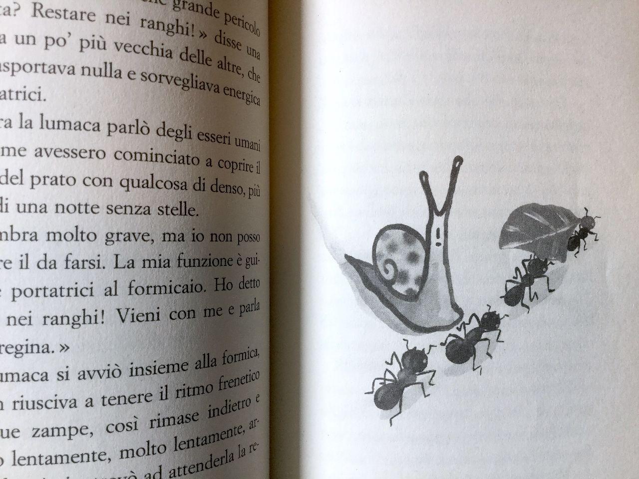 Luis Sepúlveda, Storia di un di una lumaca che scoprì l'importanza della lentezza, Guanda