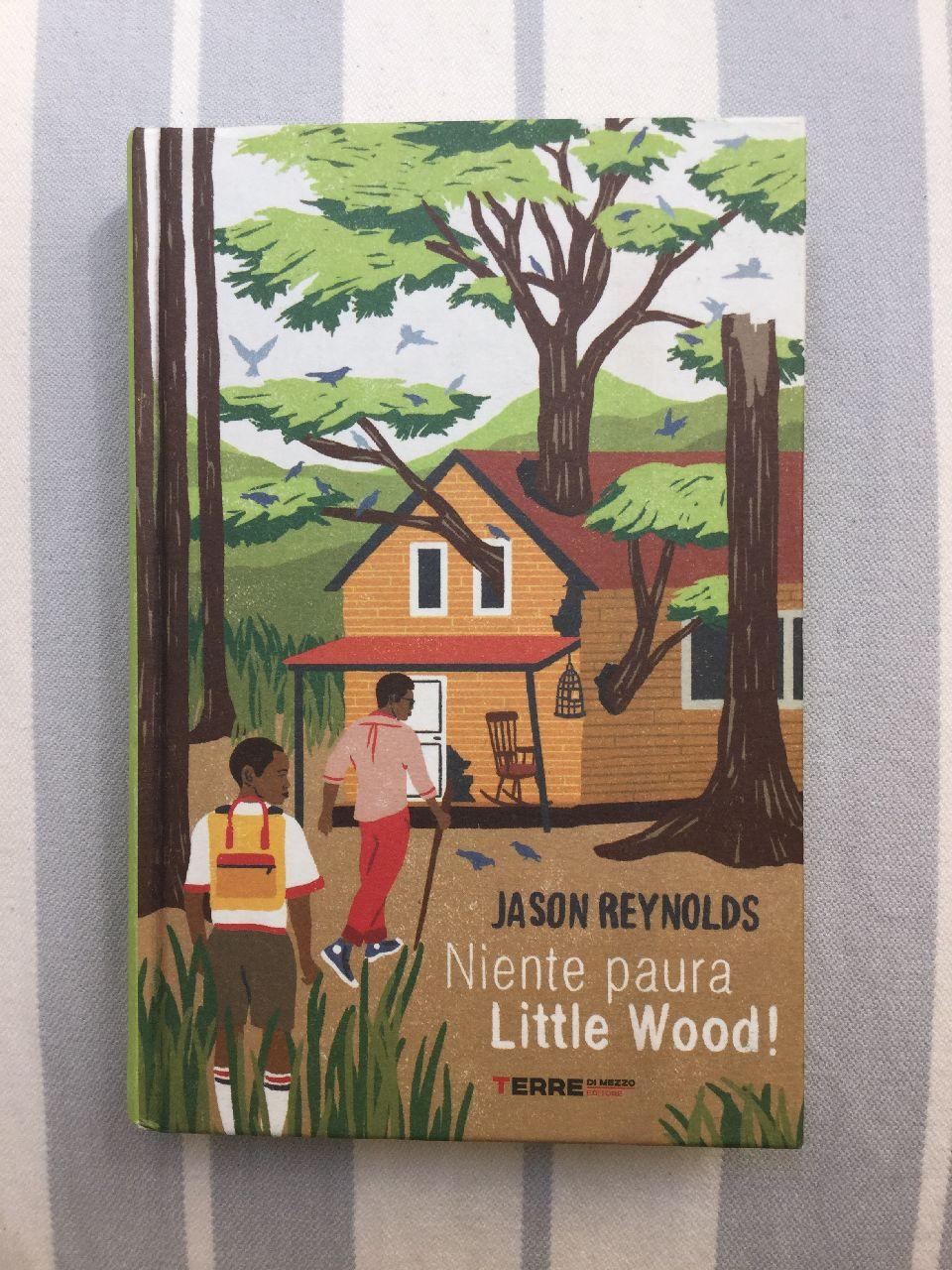 Jason Reynolds, Niente paura Little Wood! Terredimezzo