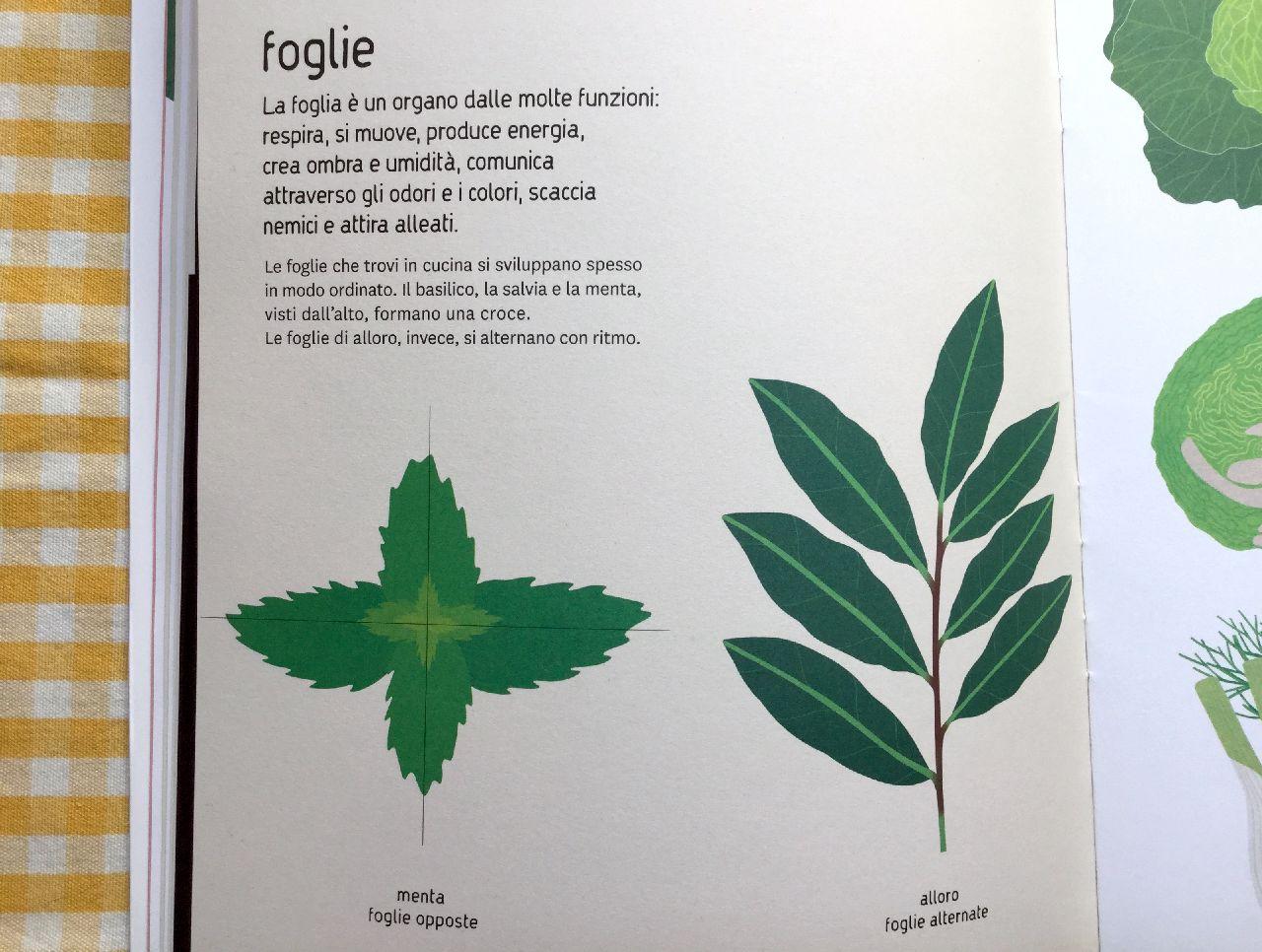 Federica Buglioni - Anna Resmini, Naturalisti in cucina, Topipittori