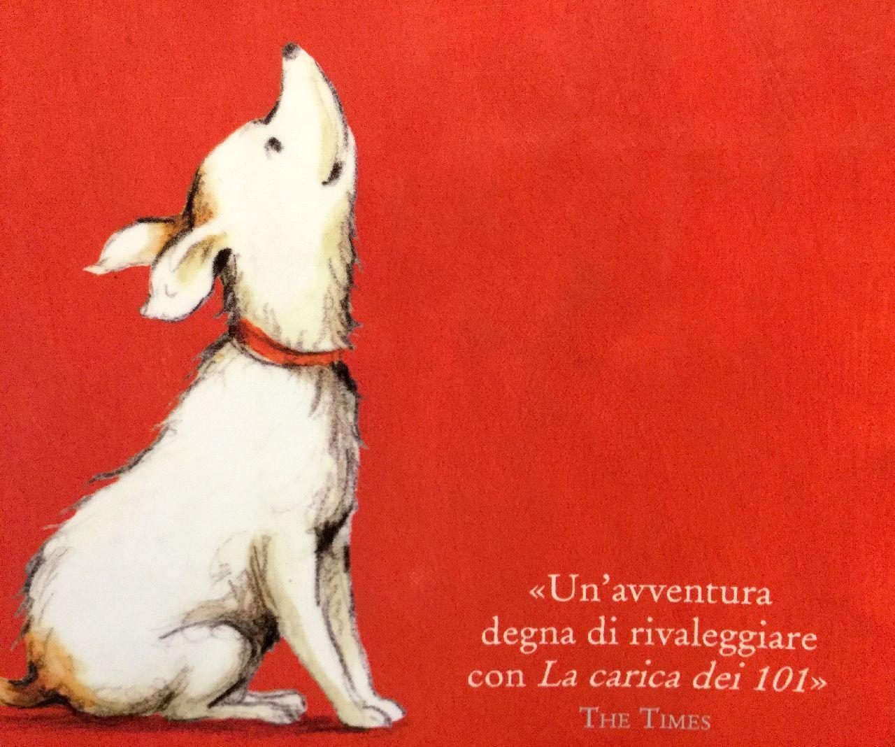 Storie di cani - Scaffale Basso