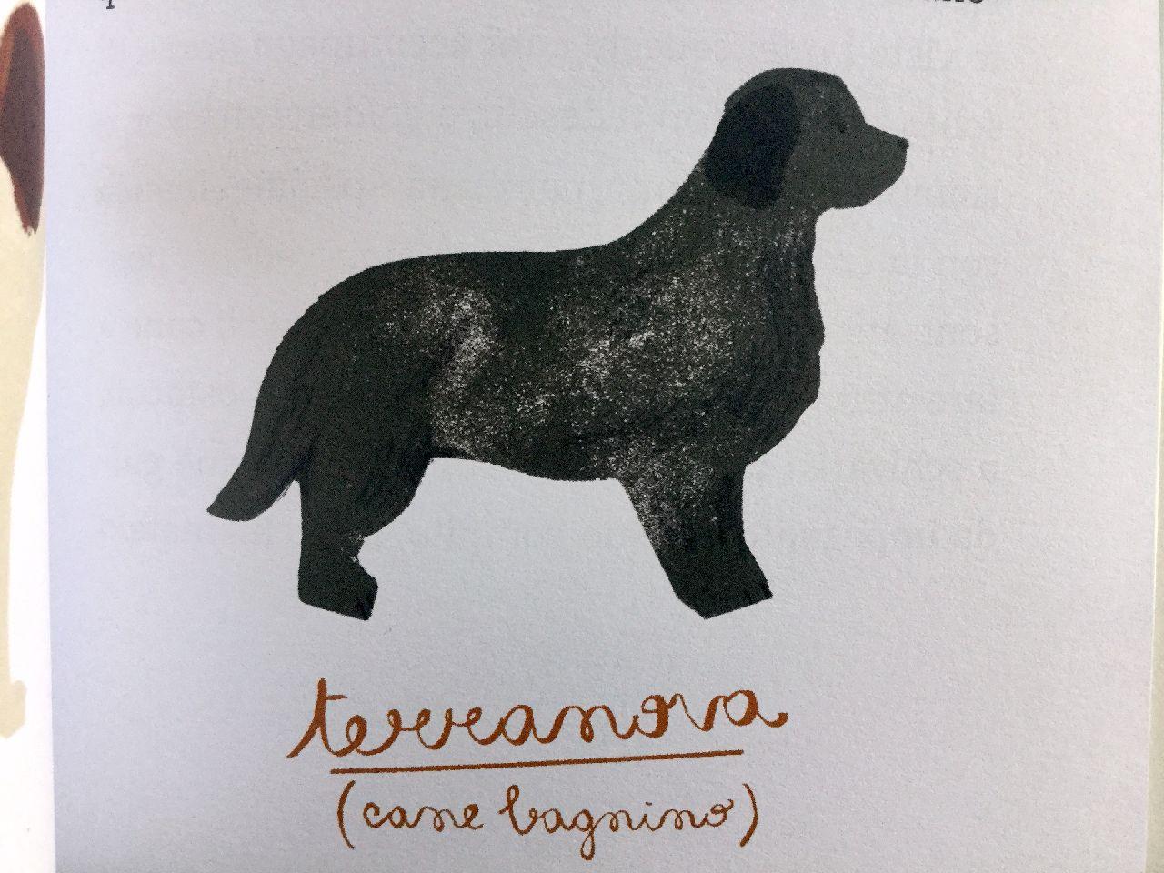 Marina Morpurgo - Gaia Stella, Vita da cani, Feltrinelli