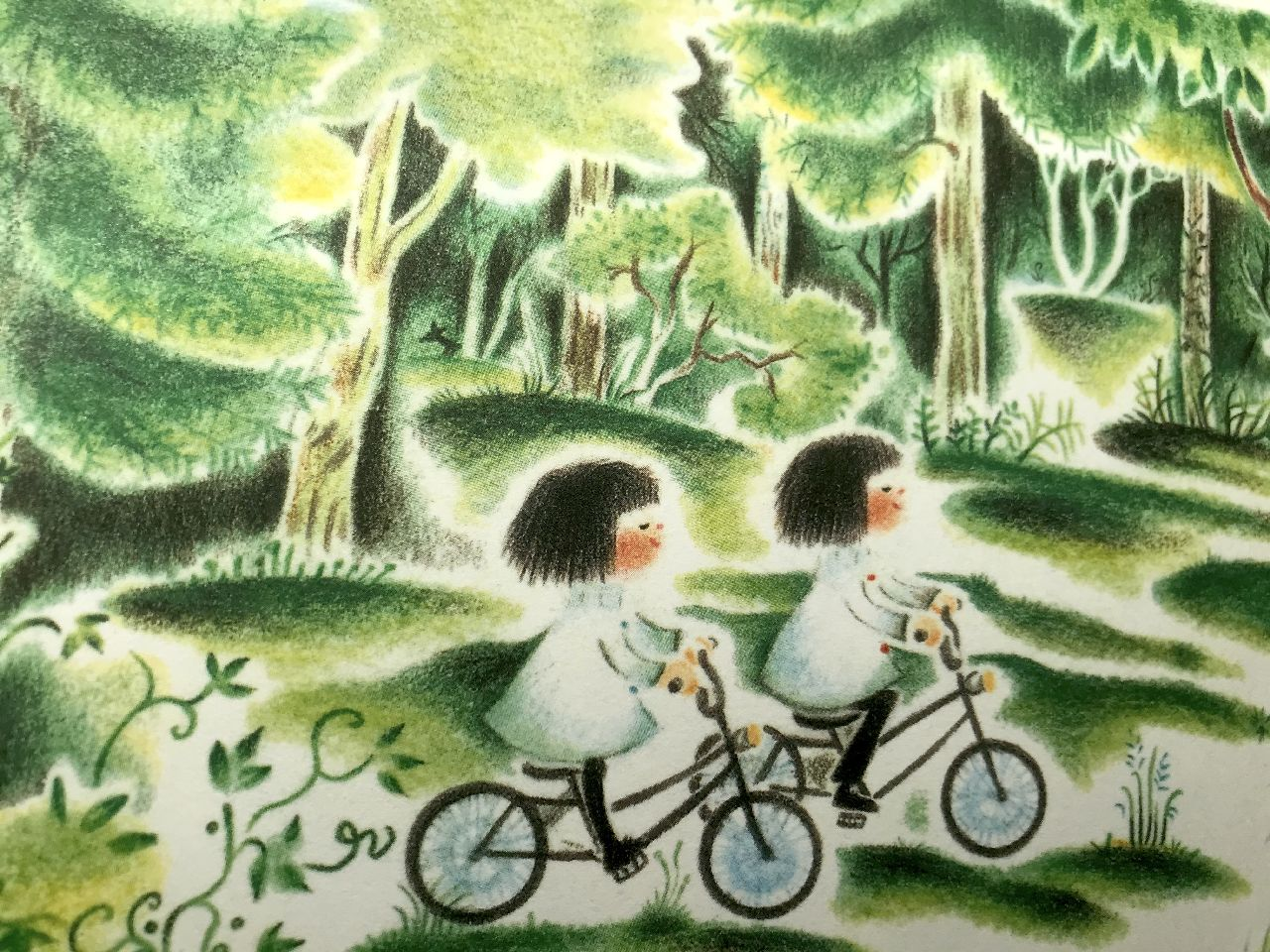 Kaya Doi, Ciri e Cirirì nel bosco delle delizie, Terredimezzo