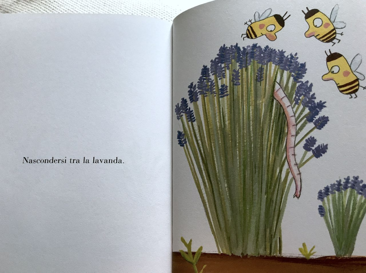 Ramona Badescu - Benjamin Chaud, Pomelo. Elefantino da giardino, Terredimezzo