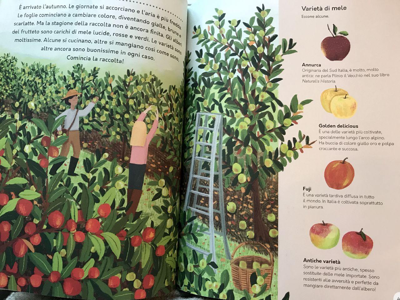 Nancy Castaldo - Ginnie Hsu, Un anno in fattoria, Slow food editore