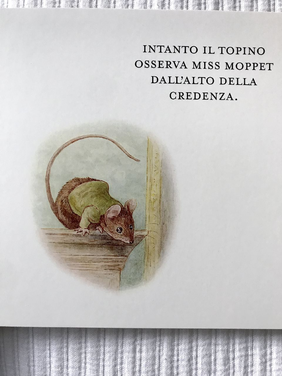 Beatrix Potter, La storia di Miss Moppet, Pulce