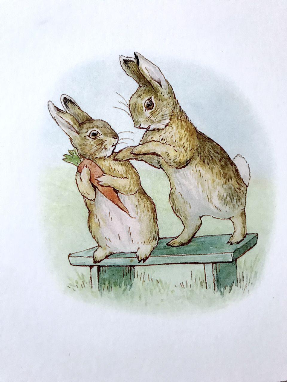 Beatrix Potter, La storia di un coniglio davvero cattivo, Pulce