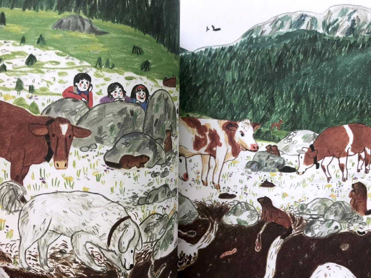 Irene Penazzi, Su e giù per le montagne, Terredimezzo